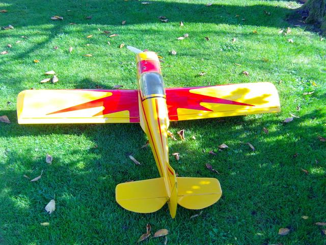 Comment à partir d'une épave fabriquer un petit avion ? Imag0039