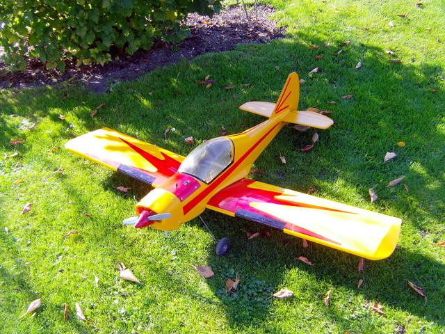 Comment à partir d'une épave fabriquer un petit avion ? Imag0041