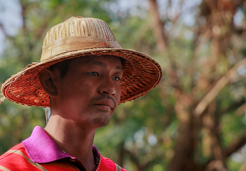 Le chapeau  26687512