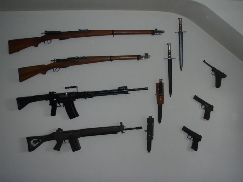 Présentation murale de vos armes ? P5010610