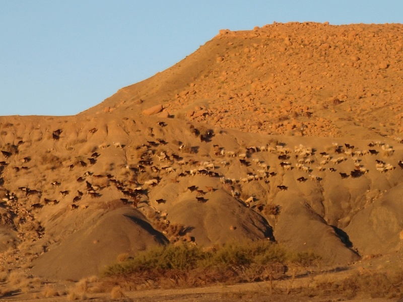 Maroc - Raid dans le Saghro Pa300212