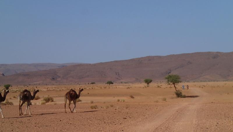 Maroc - Raid dans le Saghro Pb030412