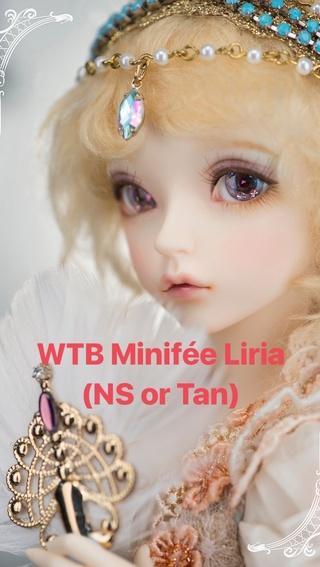 [RECHERCHE] MNF LIRIA TAN Img_8711