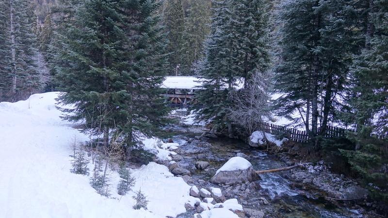 Le Boréon un lieu de montagne très prisé des randonneur Dsc03215