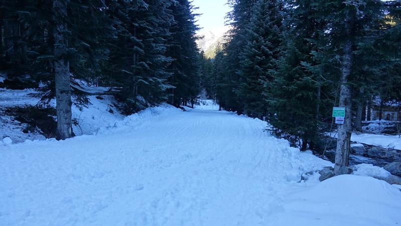 Le Boréon un lieu de montagne très prisé des randonneur Dsc03312