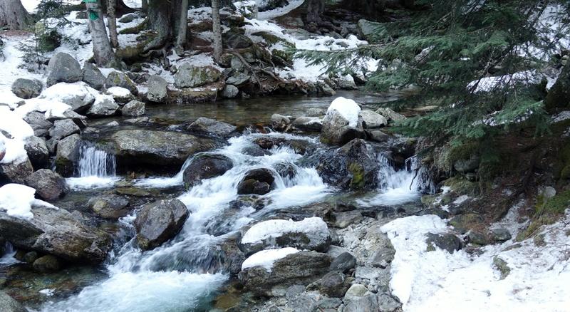 Le Boréon un lieu de montagne très prisé des randonneur Dsc03313
