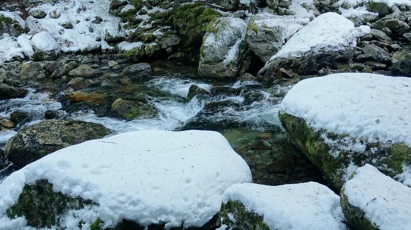 Le Boréon un lieu de montagne très prisé des randonneur Dsc03314