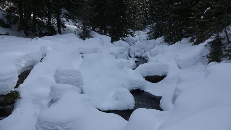 Un torrent sous la neige Dsc04013