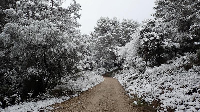 La neige sur mon village P2270011