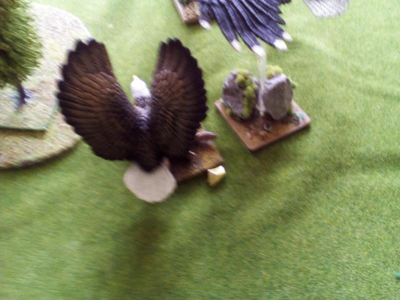 5000 Pts contre les Elfes noirs Durthu contre Malekite Img_2027
