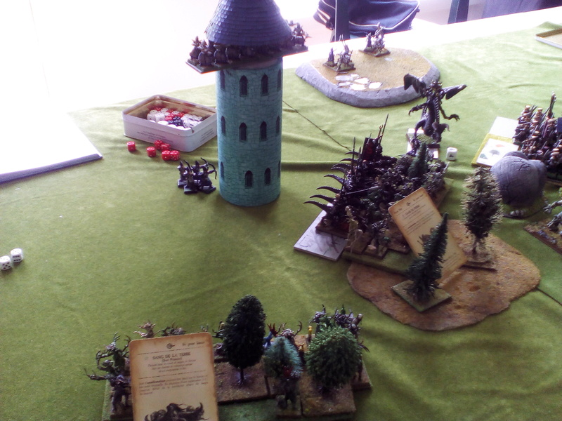 5000 Pts contre les Elfes noirs Durthu contre Malekite Img_2029