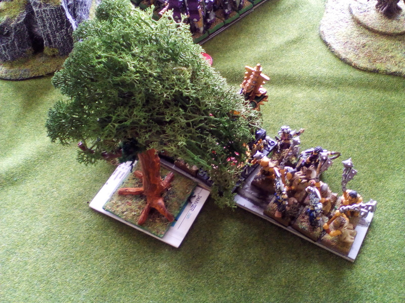 5000 Pts contre les Elfes noirs Durthu contre Malekite Img_2032