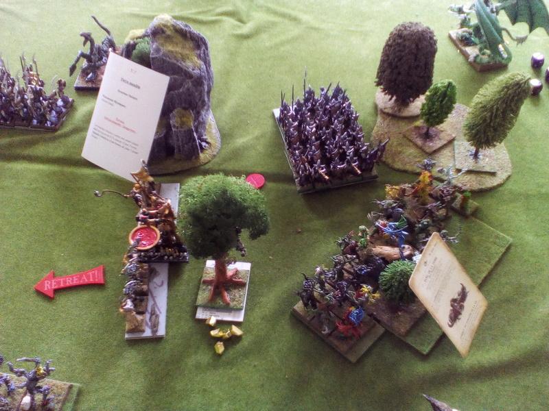 5000 Pts contre les Elfes noirs Durthu contre Malekite Img_2055