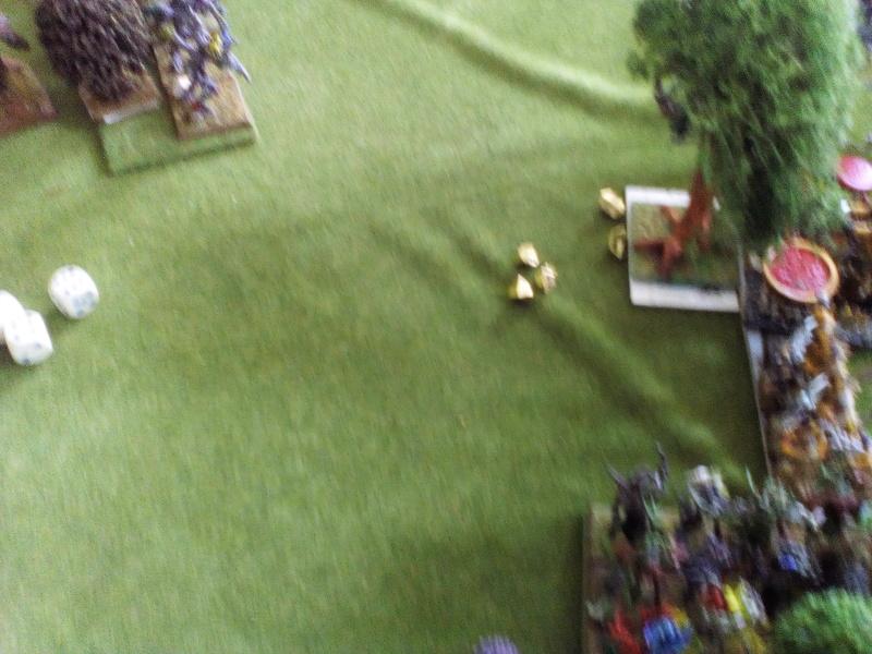 5000 Pts contre les Elfes noirs Durthu contre Malekite Img_2057