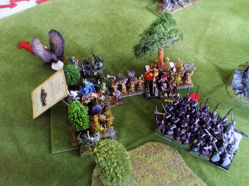 5000 Pts contre les Elfes noirs Durthu contre Malekite Img_2062