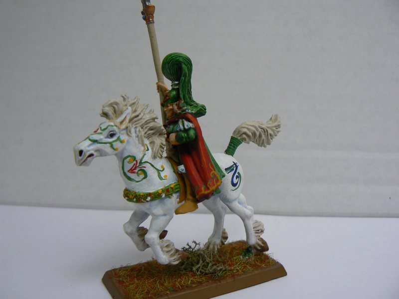 Mon Armée Elfes Sylvains - Page 3 P1160016