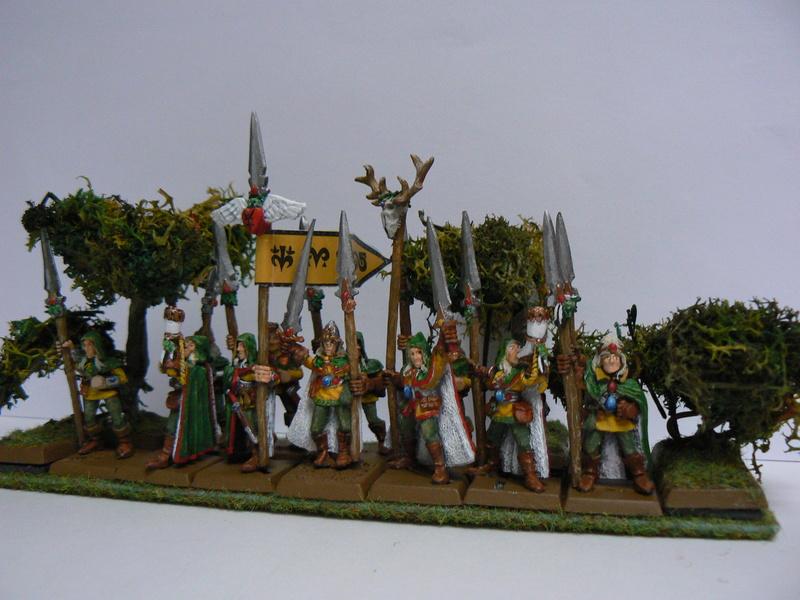 Mon Armée Elfes Sylvains - Page 4 P1160127