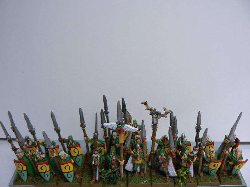 Mon Armée Elfes Sylvains - Page 4 P1160311