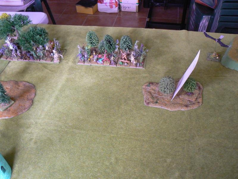5000 Pts contre les Elfes noirs Durthu contre Malekite P1160538