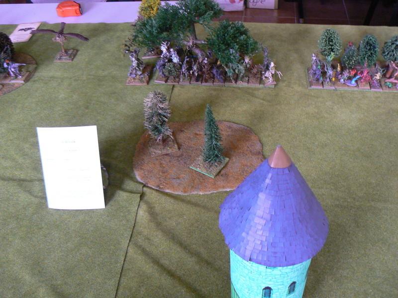 5000 Pts contre les Elfes noirs Durthu contre Malekite P1160539