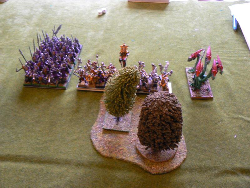 5000 Pts contre les Elfes noirs Durthu contre Malekite P1160542