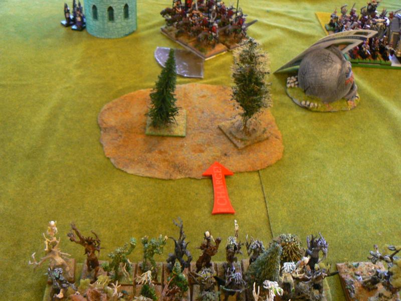 5000 Pts contre les Elfes noirs Durthu contre Malekite P1160614
