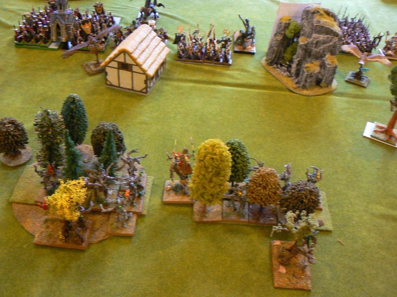 5000 Pts contre les Elfes noirs Durthu contre Malekite P1160616
