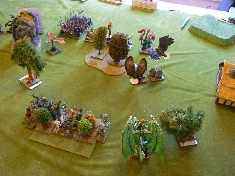 5000 Pts contre les Elfes noirs Durthu contre Malekite P1160617