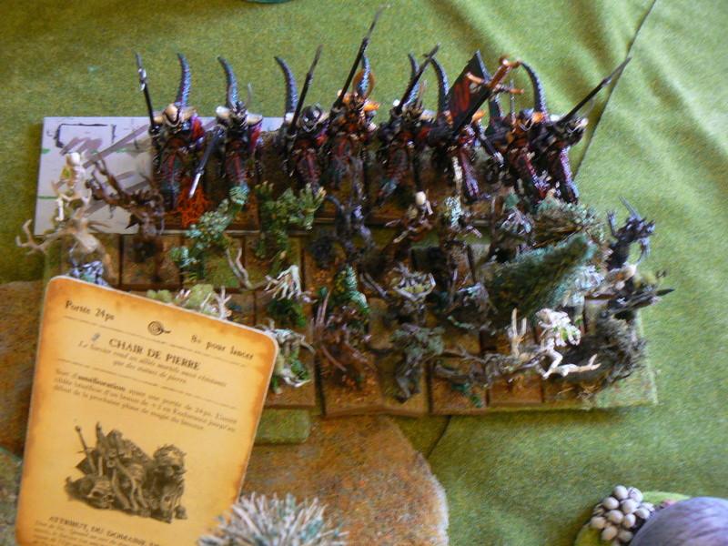 5000 Pts contre les Elfes noirs Durthu contre Malekite P1160618