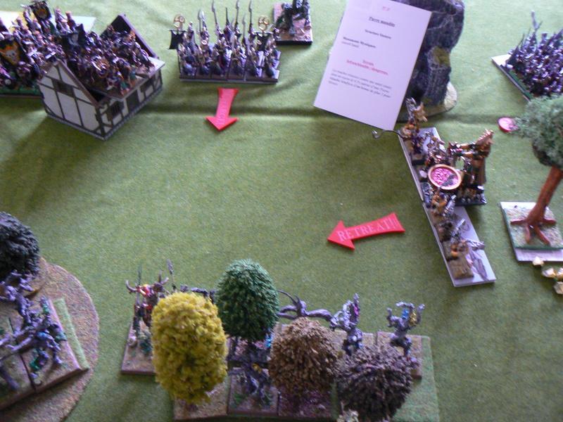 5000 Pts contre les Elfes noirs Durthu contre Malekite P1160642