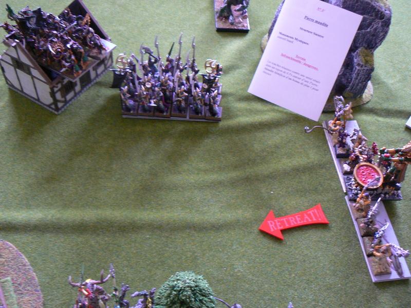 5000 Pts contre les Elfes noirs Durthu contre Malekite P1160643
