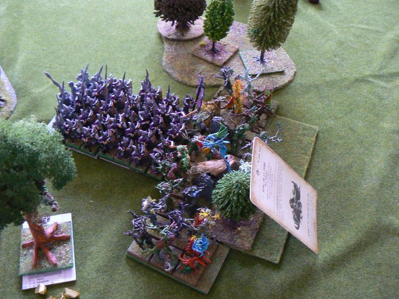 5000 Pts contre les Elfes noirs Durthu contre Malekite P1160646