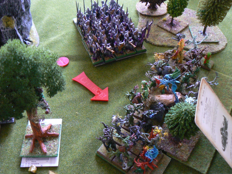 5000 Pts contre les Elfes noirs Durthu contre Malekite P1160647