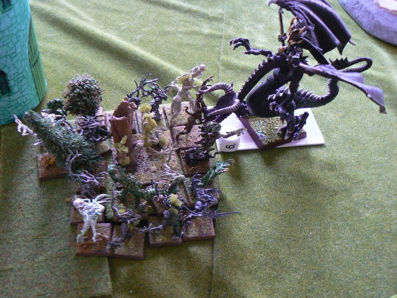 5000 Pts contre les Elfes noirs Durthu contre Malekite P1160714