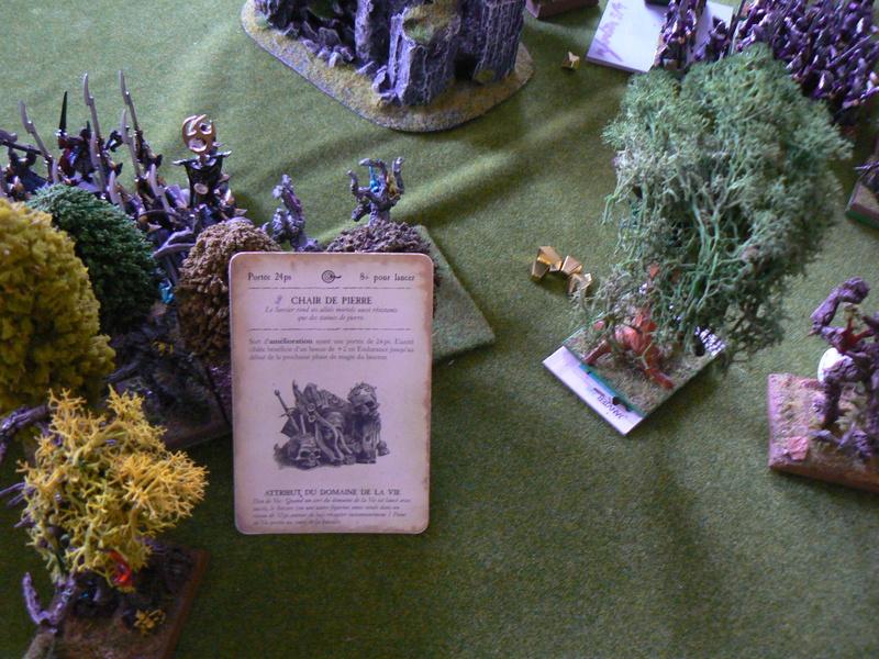 5000 Pts contre les Elfes noirs Durthu contre Malekite P1160729