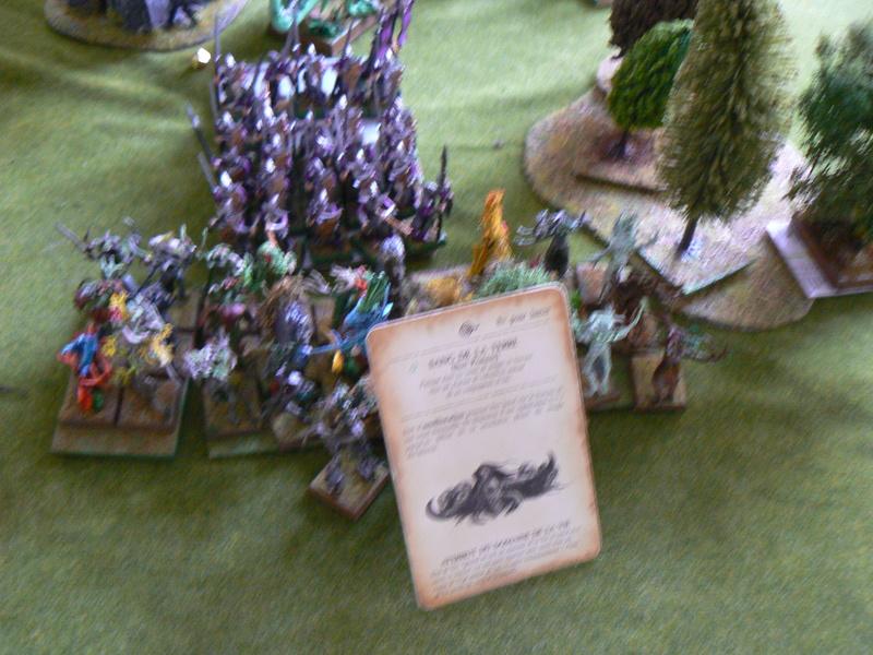 5000 Pts contre les Elfes noirs Durthu contre Malekite P1160730