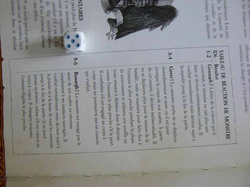 5000 Pts contre les Elfes noirs Durthu contre Malekite P1160818
