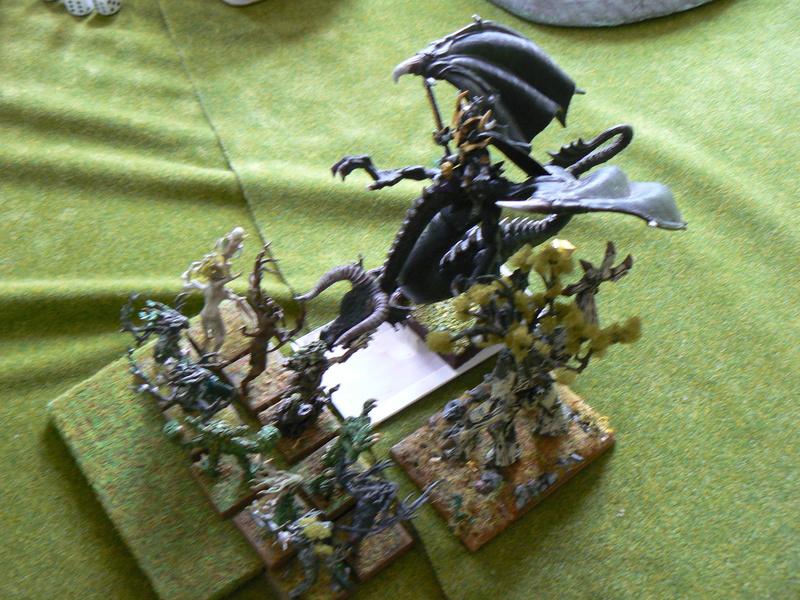 5000 Pts contre les Elfes noirs Durthu contre Malekite P1160821