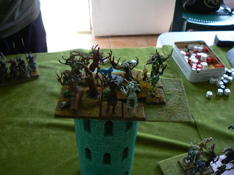 5000 Pts contre les Elfes noirs Durthu contre Malekite P1160834