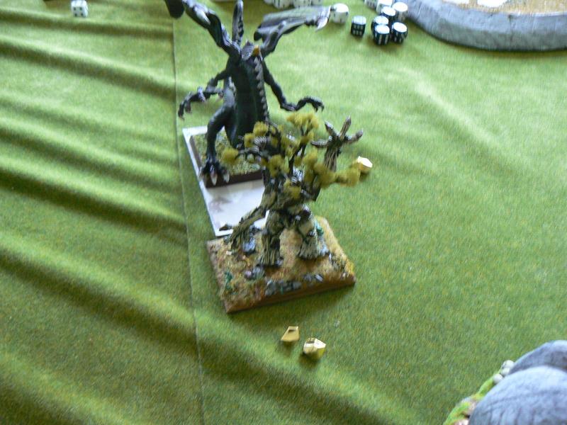 5000 Pts contre les Elfes noirs Durthu contre Malekite P1160923