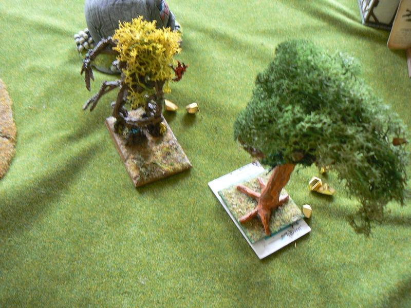 5000 Pts contre les Elfes noirs Durthu contre Malekite P1160926