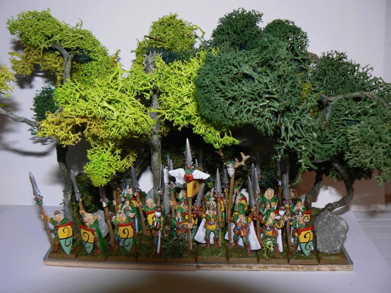 Mon Armée Elfes Sylvains - Page 4 Pa_10