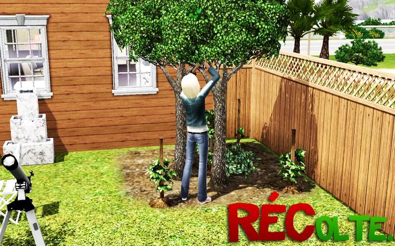Les Sims™ 3 [2009] Screen41