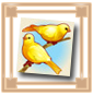 عصافير جنيفا