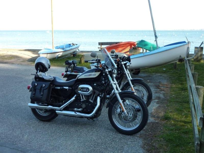combien sommes nous en 1200 Sportster sur Passion-Harley - Page 2 P1000113
