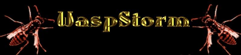 Wasp Storm - Portal Logowa10