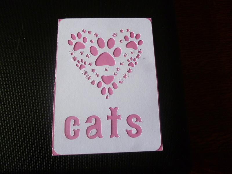 ATC Mars : les chats P1150314