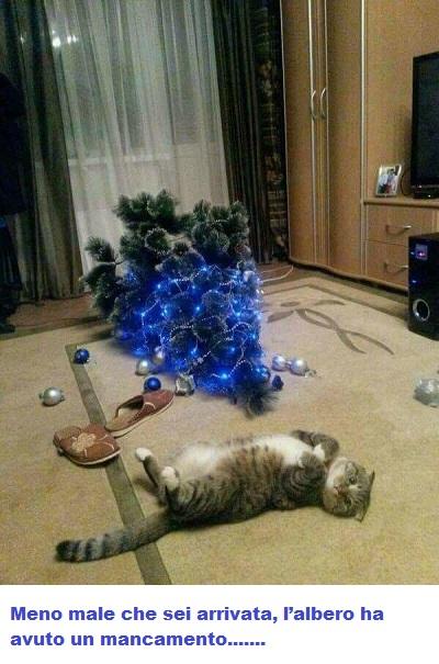 NATALE Natale21