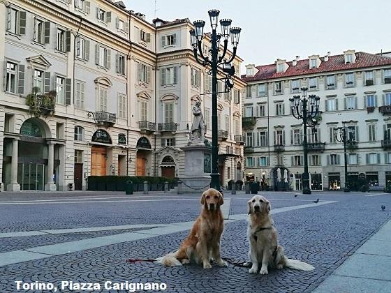 La mia TORINO... e dintorni - Pagina 3 Torino78