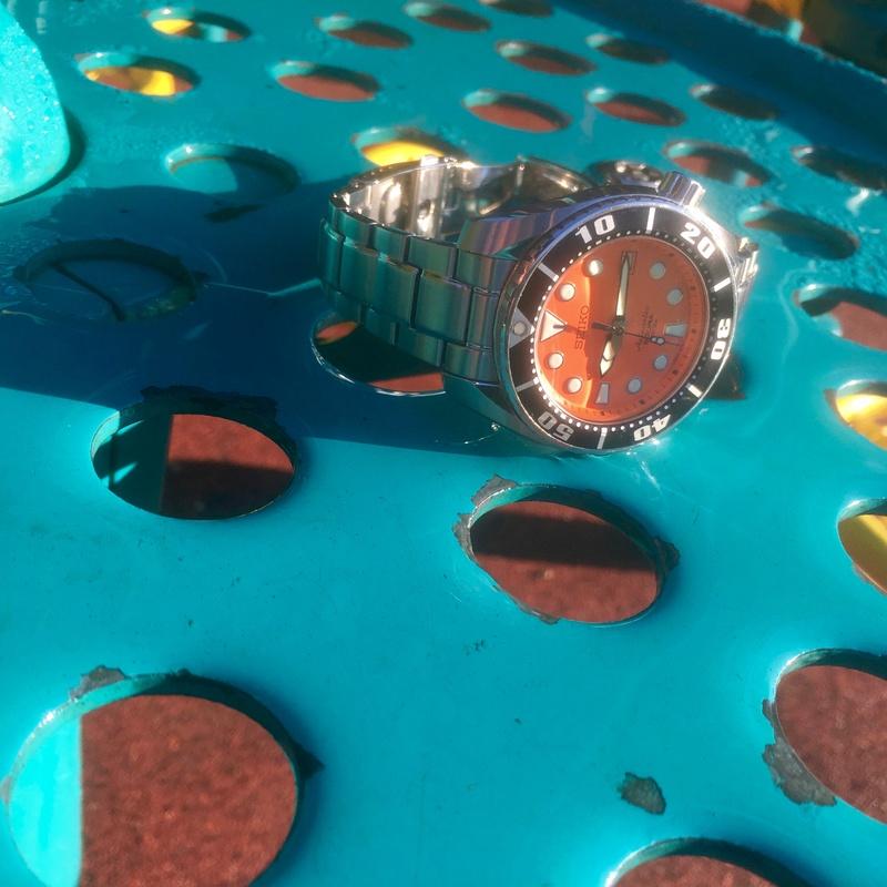 Vos photos de montres non-russes de moins de 1 000 euros - Page 10 Img_2610